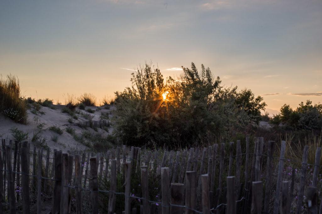 coucher soleil espiguette